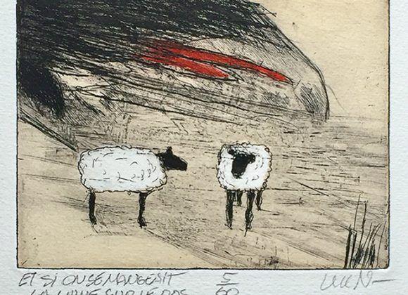Et si on se mangeait la laine sur le dos