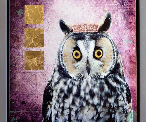 Kings & Queens (Owl)