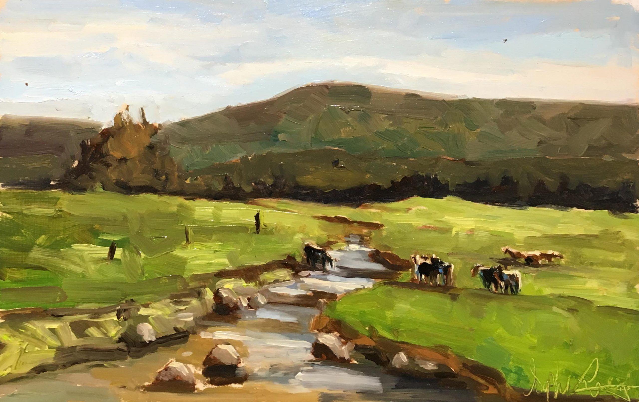 Les vaches du chemin Lavoie en été